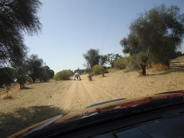 le systeme transport traditionnel villageois 3.jpg