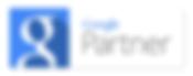 Certified Google AdWords Consultant Scott Salwolke