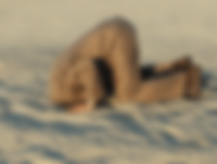 Head in the Sand.png