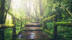 Apaiser l'anxiété n°3: Apprendre à découper sa journée en actions distinctes