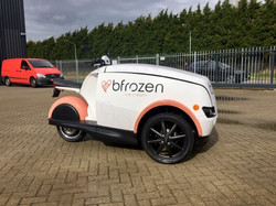 TRIPL-Bfrozen