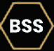 BSS.png