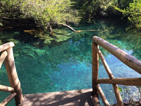 Parque ecológico ojos indígenas ¡Este oasis es real!