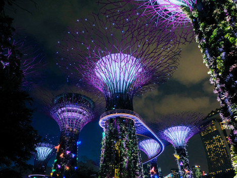 Alucina en Singapore Gardens by the Bay