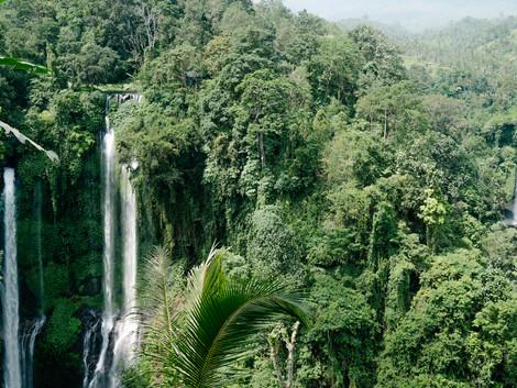 Sekumpul, las cascadas secretas más alucinantes de Bali