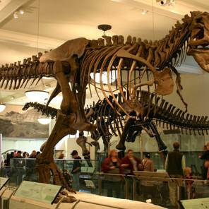 Museos gratis de Nueva York ¡Cuándo visitarlos para no pagar entrada!