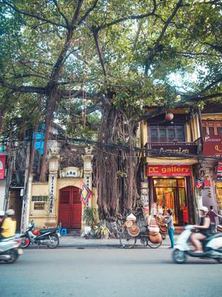 Qué ver en el Old Quater de Hanoi