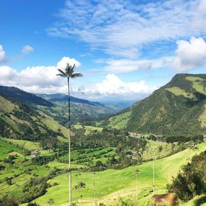 Consejos prácticos para viajar a Colombia