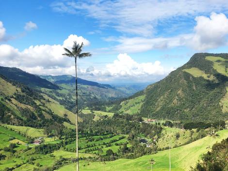 Consejos prácticos para viajar a Colombia ¡Todo lo que necesitas saber!