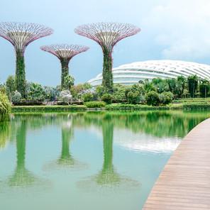 """Singapur, el país con las leyes más """"curiosas"""""""