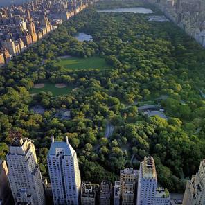 Qué ver en Central Park, los mejores lugares