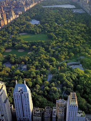 Los mejores lugares que ver en Central Park