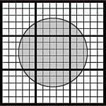 Automaton Grid 5.25.20.jpg