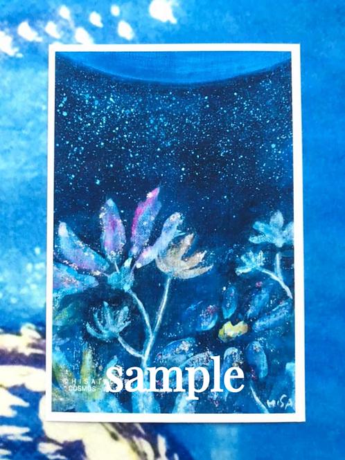 ポストカード    HISA 青い世界「COSMOSー青い星ー」