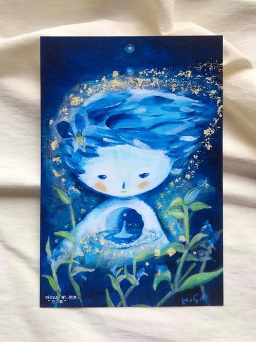 ポストカード 青い世界「月草」