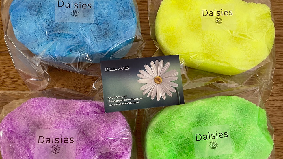 Wholesale - Pack of 5 - Soap Sponges