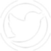 twitter-icon-white-png-23.png