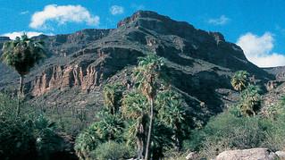 La Cueva del ratón en Baja California Sur