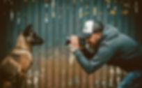 Hundefotograf Haltern am See