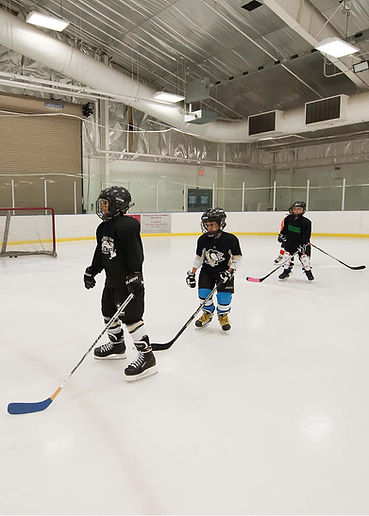 Edited Hockey Image.jpg