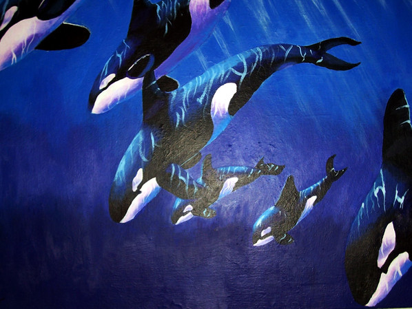 Sea Star Acrylic Painting