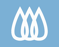 Logo-Grace2020.png