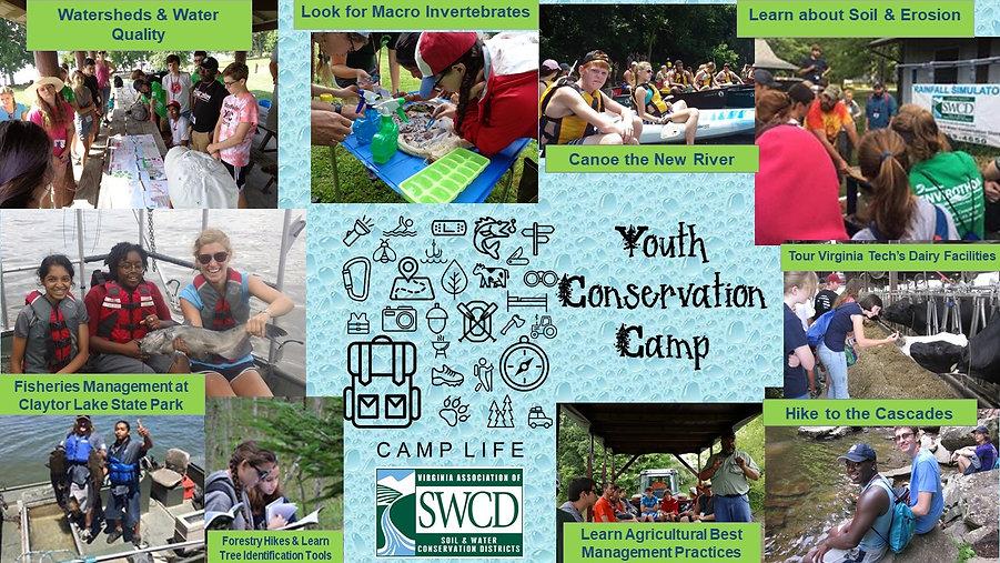 YCC-Webpage.jpg