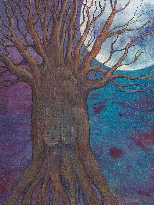 """Spirit of the Trees"" Archival Print"