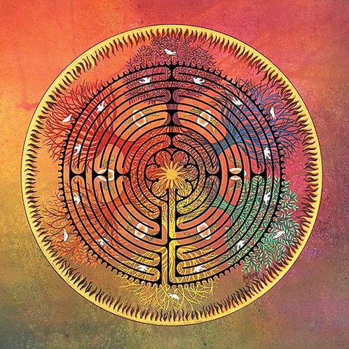 """""""Labyrinth Renewal"""" Scarf"""