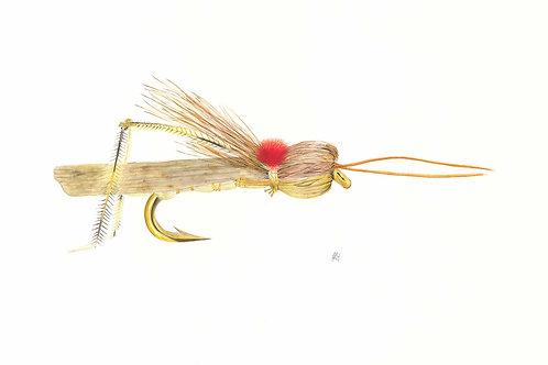 The Hopper Fly Giclee Print