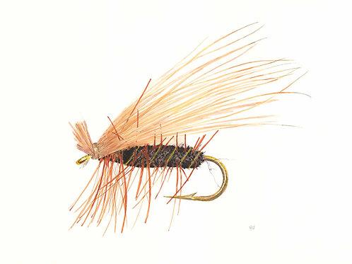 The Elk Hair Caddis Fly Giclee Prints