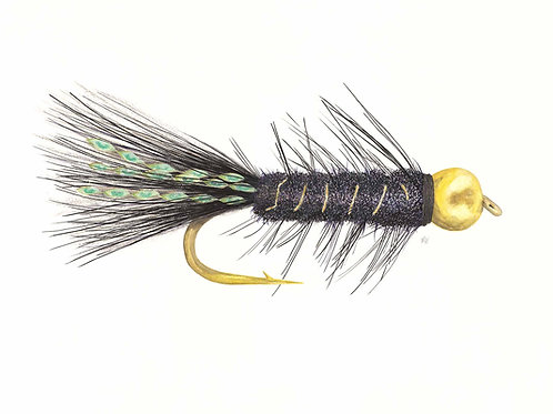 The Woolly Bugger Fly Giclee Print