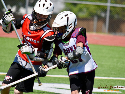 Lacrosse2_watermarked.jpg