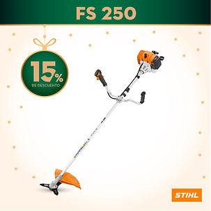 FS 250.jpg