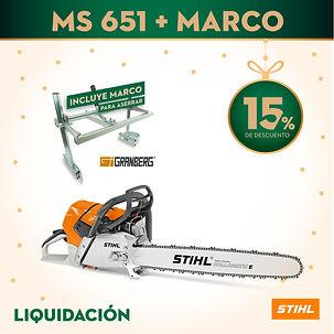 MS 651 + MARCO.jpg