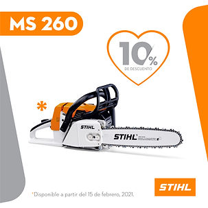 MS 260.jpg