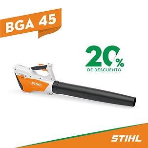 BGA 45.jpg