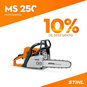 MS 250.jpg