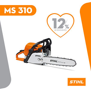 MS 310.jpg