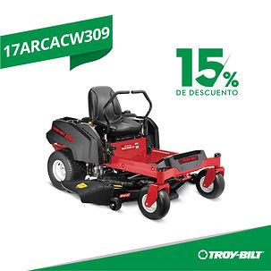 17ARCACW309.jpg