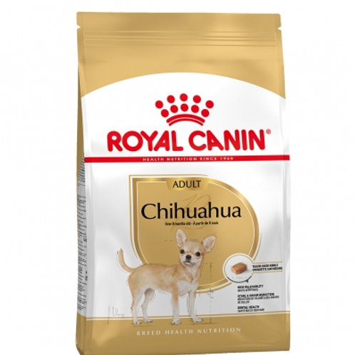 RC Chihuahua 1.5 kg