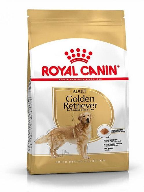 RC Golden retriever 12 KG