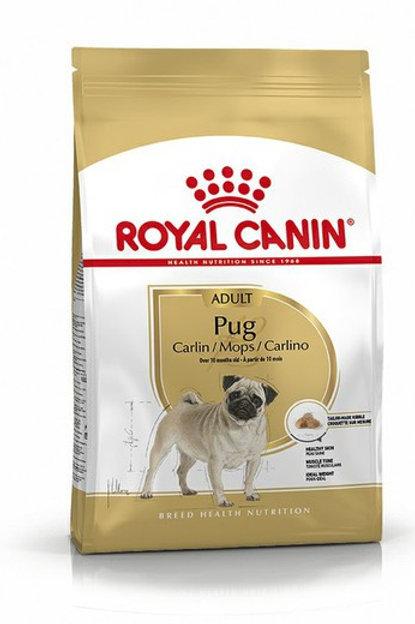 RC Pug/Carlin 3 kg