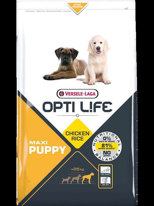 OPTILIFE Maxi Puppy 12.5 kg