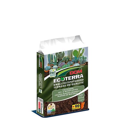DCM Ecoterra Cactus & Plantes grasses 10L