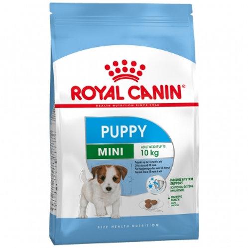 RC Mini puppy 4 kg