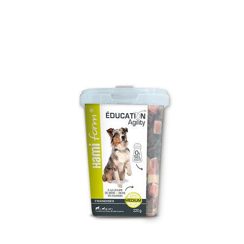 HAMIFORM Education Medium 260g
