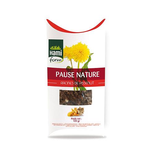 HAMIFORM Pause Nature Racines de Pissenlit 120g