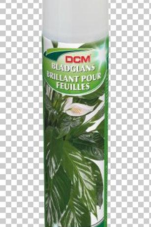 DCM Brillant Pour Feuilles 0.4L
