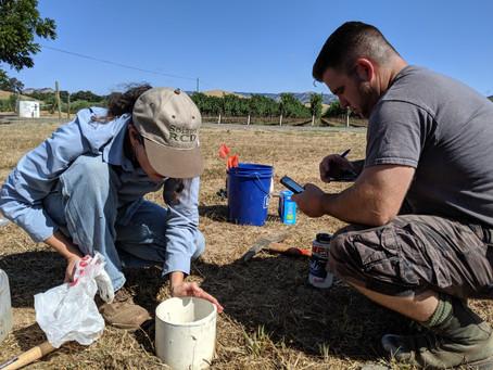 Baseline soil sampling
